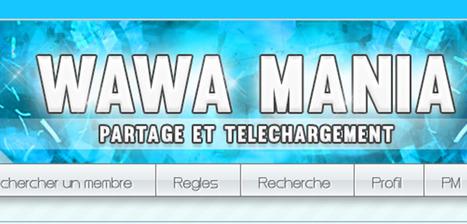 BREVES |Un an de prison ferme pour l'administrateur de Wawa-mania |Legalis.net | Droit de l'économie numérique | Scoop.it