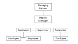 Why Defining a Corporate Structure for Startups Matters | CSUCI MGT 307-04 | Scoop.it
