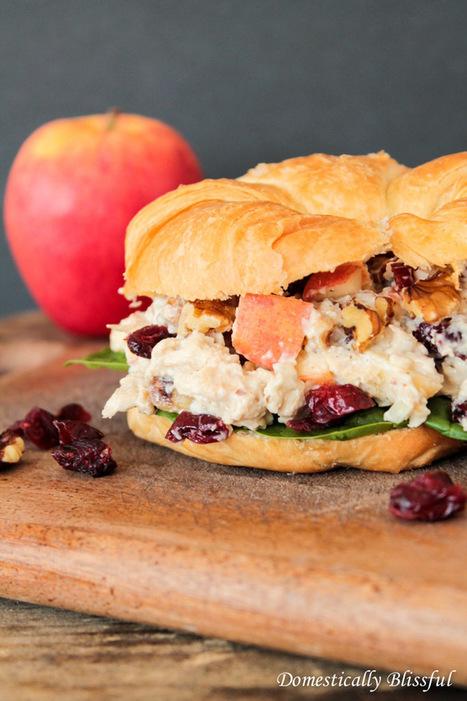 Apple Cranberry Chicken Salad   Happy Nibbler   Scoop.it