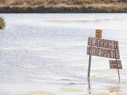 Notre-Dame-des-Landes: Pourquoi les écolos s'opposent à la construction de l'aéroport | jocegaly | Scoop.it