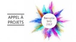 Appel à projets Tremplin SHS 2017IDF Innov | Ifsttar | Scoop.it