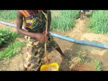 2014 Año de la Agricultura Familiar: «Alimentar al mundo, cuidar al planeta»   Mercados de Medio Ambiente   Agricultura   Scoop.it