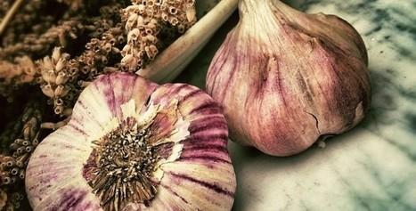 Garlic:  Drawbacks | Writing & Creative Ideas are essentials! | Scoop.it