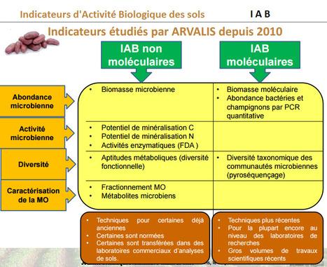 Les Indicateurs d'Activité Biologique des sols testés par ARVALIS en France | MOF Matière Organique Fugace réactive du sol | Scoop.it