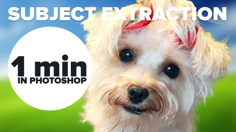 How To Extract in Photoshop in 1 Minute   xposing world of Photography & Design   Scoop.it