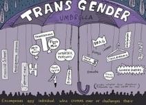 Wat betekent transgender? | cavaria.be | Transgenders | Scoop.it