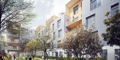Construction: la filière bois en quête de crédibilité   D'Dline 2020, vecteur du bâtiment durable   Scoop.it