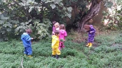 Aprendre a la natura. L'experiència de les escoles bosc a Espanya   SOCIETAT I EDUCACIÓ   Scoop.it