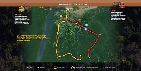 Greenpeace surprend en flagrant délit des exploitations illégales de bois en Amazonie | Actu, moto & politique | Scoop.it