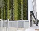 Murs végétalisés : les plantes à l'assaut des villes - Localtis.info un service Caisse des Dépôts | La nature en ville. | Scoop.it