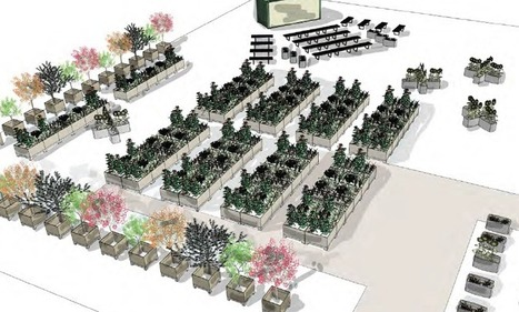 Nomad Gardens: A Modular Moveable Feast for Vacant Lots | Food on GOOD | Vertical Farm - Food Factory | Scoop.it