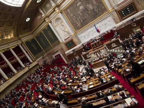 Contre le racisme, l'Assemblée supprime le mot «race» de la loi - Rue89   Revue de presse hétéroclite...   Scoop.it