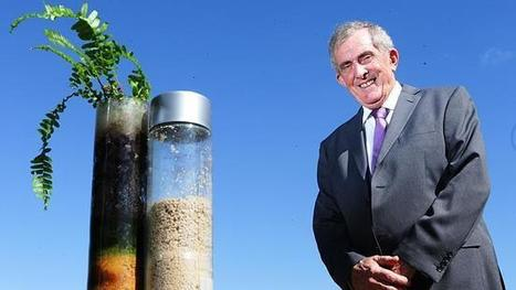 Planting ideas on carbon - The Australian | Carbon Farming | Scoop.it