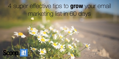 4 super effective tips to grow your email marketing list in 60 days   Email Marketing Tips   Scoop.it