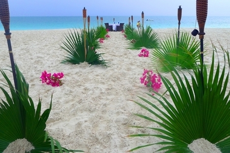 Turks And Caicos Is The Perfect Caribbean Island   Ms Patel's Identity:  GSPEC   Scoop.it