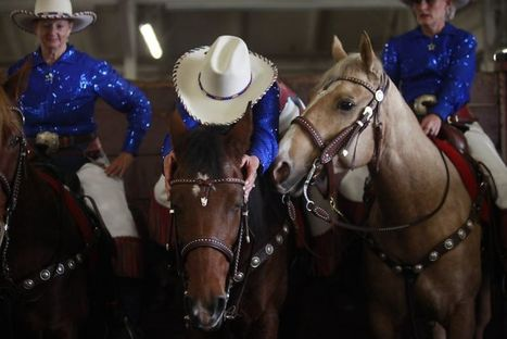Horsing Around with the California Cowgirls at the Cow Palace   Horse and Rider Awareness   Scoop.it
