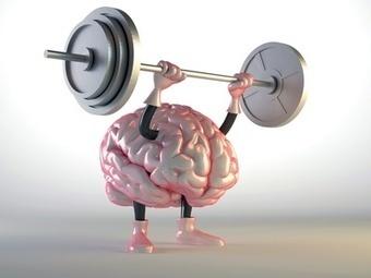 Comment maximiser stratégiquement votre intelligence émotionnelle? | Créer de la valeur | Scoop.it