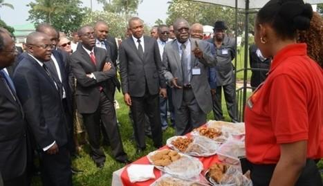 RDC : des jeunes agro-entrepreneurs congolais exposent des produits dérivés du manioc et du soja à la Primatur | CONGOPOSITIF | Scoop.it