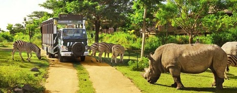 Bali Adventure tours | All kind of Bali Adventure available | Bali Tour Packages | Scoop.it
