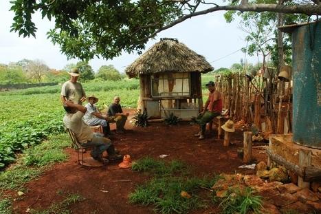 Comment les cubains ont converti leur île au bio | Nouveaux paradigmes | Scoop.it