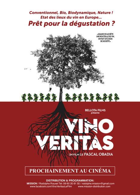 Film | VINO VERITAS - cepdivin.org - les imaginaires du vin | World Wine Web | Scoop.it