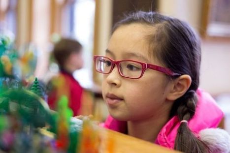 Skaneateles Library inspires creative imaginations with annual Lego building ... - Auburn Citizen | Recess for the Mind | Scoop.it