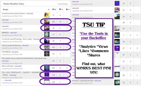 TSU SOCIAL MEDIA is the Number 1 Source to share YOUR own targeted Content | Marketing Tools | Scoop.it