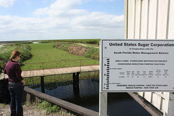 Audubon Florida files legal challenge against sugar farms' permits | The Florida Current | The Everglades Puzzle | Scoop.it