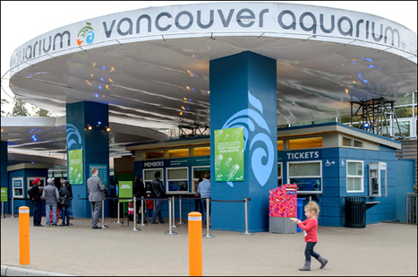 What I learned at the Vancouver Aquarium | Vacay.ca | Animal Cruelty | Scoop.it