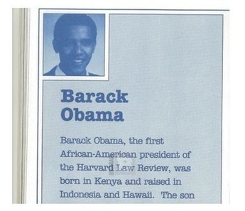 Is Barack Obama a pathological liar? Top 60 broken promises examined | Telcomil Intl Products and Services on WordPress.com