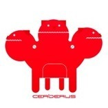 Cerberus – best security Application for Android | Tutorialnew | Scoop.it