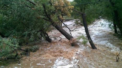 El cambio climático, cada vez más evidente | Agua | Scoop.it