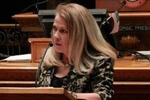 Colorado Legislator: Poverty Higher Among 'Black Race' Because They Eat Too Much Chicken | Blacks | Scoop.it