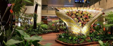 Airport Marketing SimpliRecap: North Korea's Futuristic Airport, Changi Airport's Enchanted Garden, How to Get a Coffee by Yawning & more! | Airports News and Trends | Scoop.it