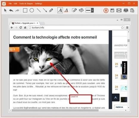 TinyTake - Annotez vos captures écran facilement - Korben   François MAGNAN  Formateur Consultant   Scoop.it