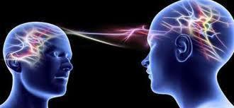 ''L'intelligence, c'est être relié aux autres'', par Pascal Picq   Le meilleur de vous   Scoop.it