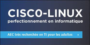 Accueil | Collège de Maisonneuve - Formation continue | Formation continue en technologie | Scoop.it