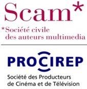 Webdocumentaires   Le blog documentaire   Nouvelles narrations   Scoop.it