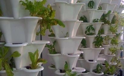 Urban farming on brink of corporate era | Urban Aquaponics Farm | Scoop.it