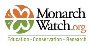 Monarch Watch | Second Grade Unit Resources on Life Cycles | Scoop.it