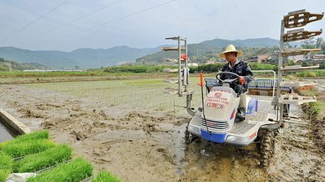 China Admits That One-Fifth Of Its Farmland Is Contaminated | AP Human Geography Herm | Scoop.it