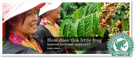 Our Work in Sustainable Agriculture | Rainforest Alliance | sustainability | Scoop.it