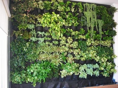 Edificios ecológicos: jardines verticales : Arte | Jardines Verticales y azoteas verdes. | Scoop.it
