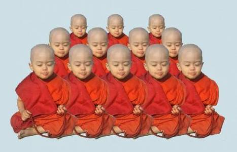 Be a Vegan Monk and Crank Out All the Babies You Want | Growth Mania | Scoop.it