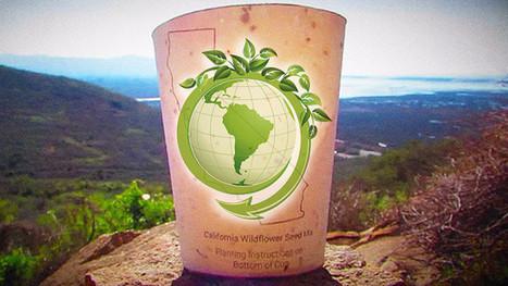 GoodNews ! Il invente l'éco-gobelet qui donne la vie aux arbres | Vous avez dit Innovation ? | Scoop.it