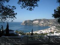 Costa Tropical Events | Spanish Language School of La Herradura, South Spain. | Learn Spanish | Scoop.it