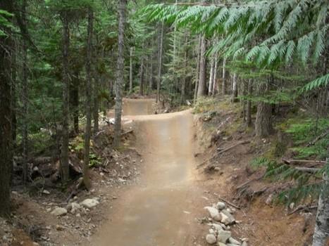 Les bike parks - Définition et Histoire | Tourisme de randonnées                                                                                                                                                                                 & Sports de nature pour les pros | Scoop.it