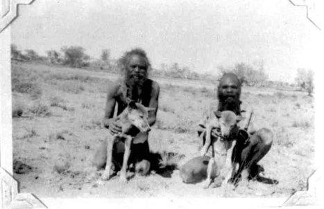 Blog de Christophe Darmangeat: Les Aborigènes, le dingo et la ... | Les aborigènes | Scoop.it
