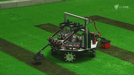 Battle of the bots: New Zealand and Australia fight it out for top spot - SBS   Heron   Scoop.it