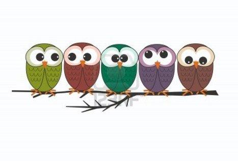Birds-of-Paradise Project - YouTube | Bendita Pasión | Scoop.it